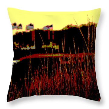 American Flags2 Throw Pillow by Zawhaus Photography