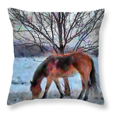 American Paint In Winter Throw Pillow by Jeff Kolker