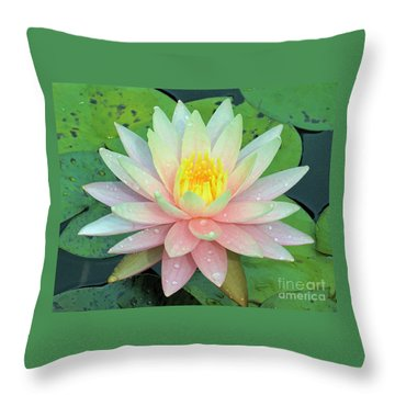American Water Lilies Nine Throw Pillow