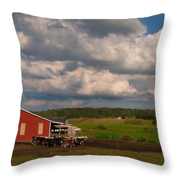 Throw Pillow featuring the photograph America's Breadbasket by Cindy Haggerty