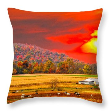 Amish Farm Sundown Throw Pillow by Randall Branham