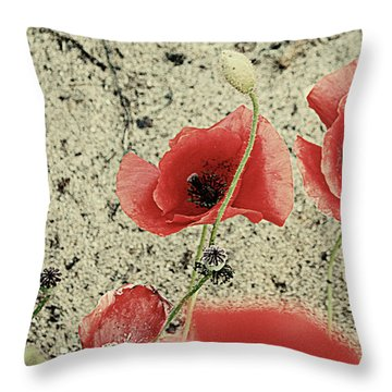 Among The Cross Throw Pillow by Empty Wall