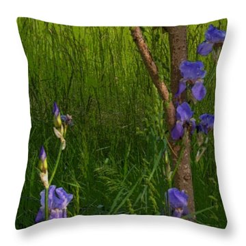 Among The Grasses Throw Pillow by Julie Grace