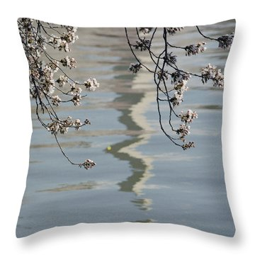 An Abstract Reflection Throw Pillow