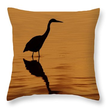An Early Morning Dip Throw Pillow by Tony Beck
