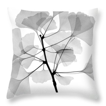 An X-ray Of Ginko Leaves Throw Pillow by Ted Kinsman