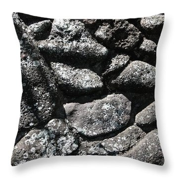 Ancient Rock Wall Throw Pillow by Craig Wood
