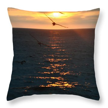 ...and At The End Of The Day... Throw Pillow by Valerie Rosen