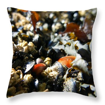 And Cockle Shells Throw Pillow