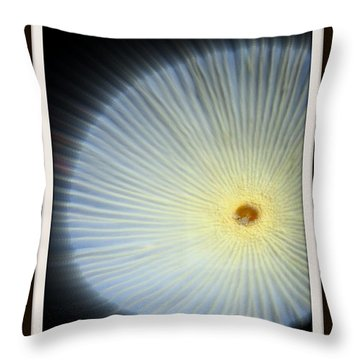 Andromeda Throw Pillow by Priscilla Richardson