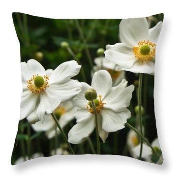 Anemonae Cluster 8 Throw Pillow by Douglas Barnett