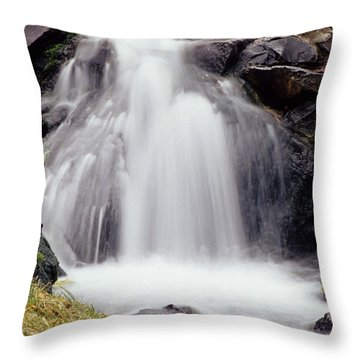 Throw Pillow featuring the photograph Angel Hair by Sharon Elliott