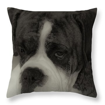 Angelic Boxer Throw Pillow by DigiArt Diaries by Vicky B Fuller