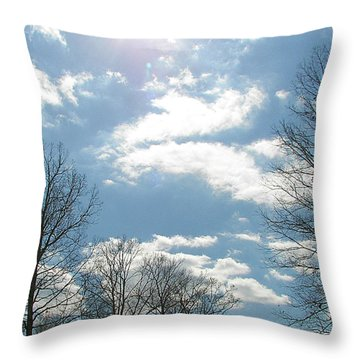 Throw Pillow featuring the photograph Angels On High by Pamela Hyde Wilson