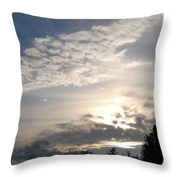 Angel's Wing Throw Pillow