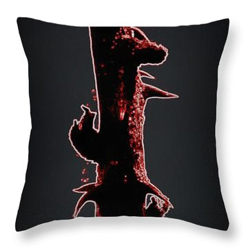 Throw Pillow featuring the photograph Anger by Renee Trenholm
