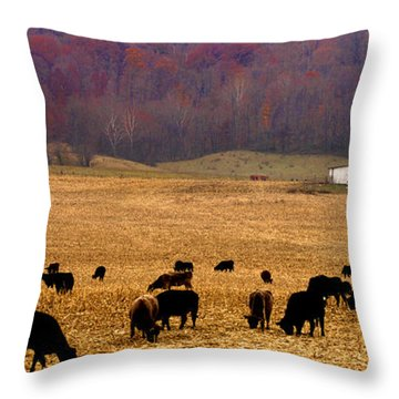 Throw Pillow featuring the photograph Angus And Oaks  Farm by Randall Branham