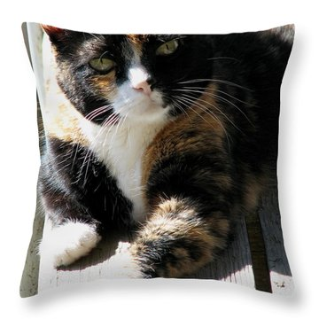 Throw Pillow featuring the photograph Annie Banannie by Rory Sagner