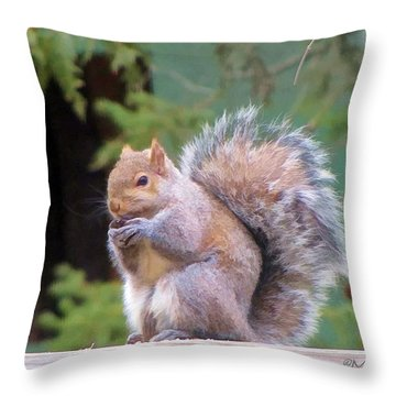 Throw Pillow featuring the photograph Another Day Another Walnut by Maciek Froncisz