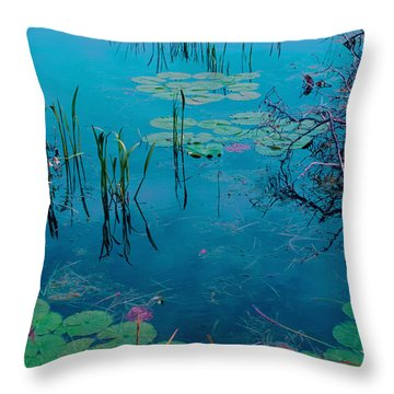 Another World Vii Throw Pillow