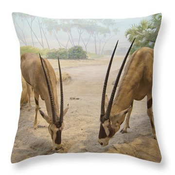 Antelope In The Sand With Their Heads Throw Pillow by Laura Ciapponi