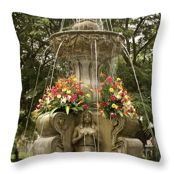 Antigua Fountain Throw Pillow