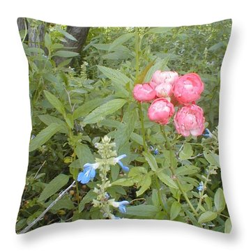 Antique Rose Throw Pillow