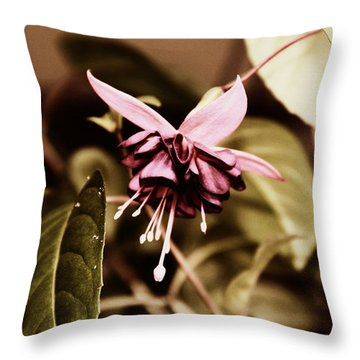 Throw Pillow featuring the photograph Antiqued Fuchsia by Jeanette C Landstrom