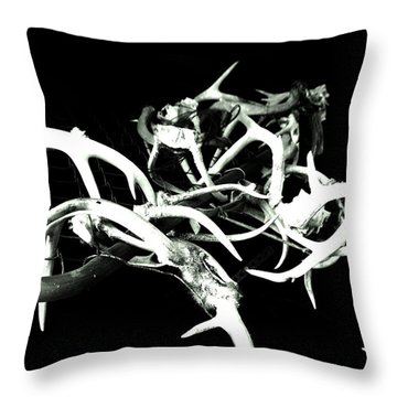 Throw Pillow featuring the photograph Antler Chain by Amy Sorrell
