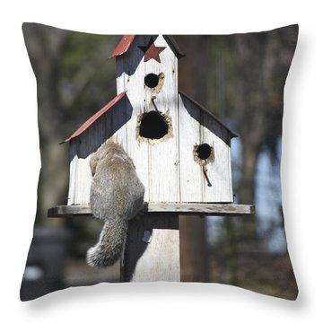 Anyone Home Throw Pillow by Teresa Mucha