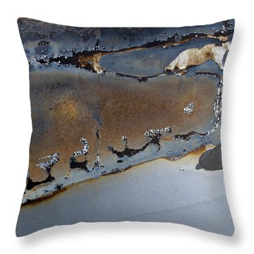 Ap12 Throw Pillow by Fran Riley