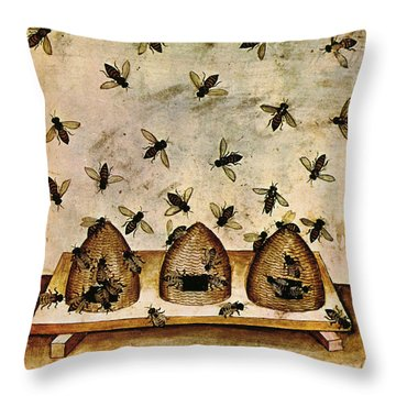 Apiculture-beekeeping-14th Century Throw Pillow by Science Source