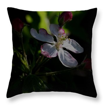 Apple Blossom2 Throw Pillow