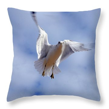 Throw Pillow featuring the photograph Applying Brakes In Flight by Clayton Bruster