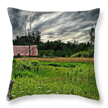 Approaching Storm  Throw Pillow by Ms Judi