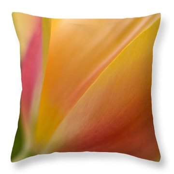 April Grace Throw Pillow by Mike Reid