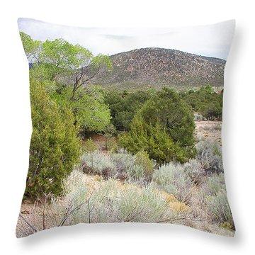 April New Mexico Desert Throw Pillow
