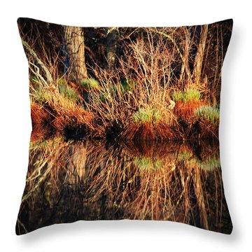April's Pond Throw Pillow by Karol Livote