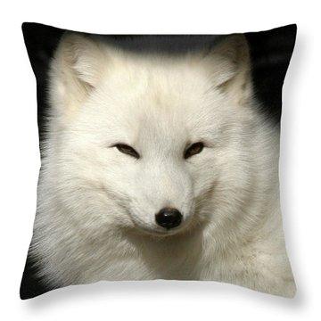 Arctic Fox Portrait Throw Pillow