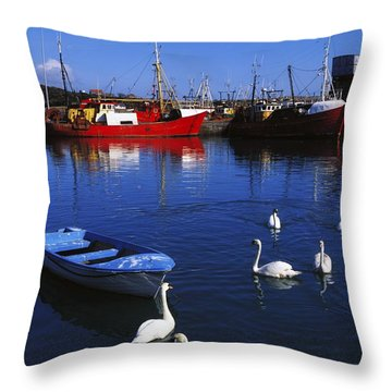 Ardglass, Co Down, Ireland Swans Near Throw Pillow by The Irish Image Collection