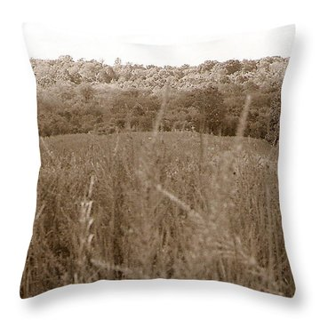 Are We Willing Black And White Throw Pillow
