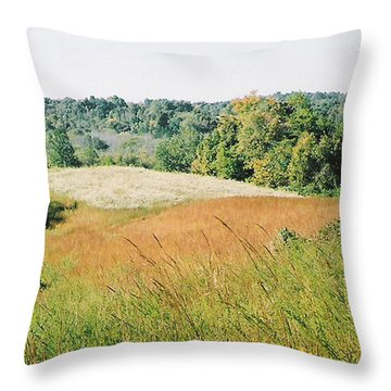 Are We Willing Throw Pillow