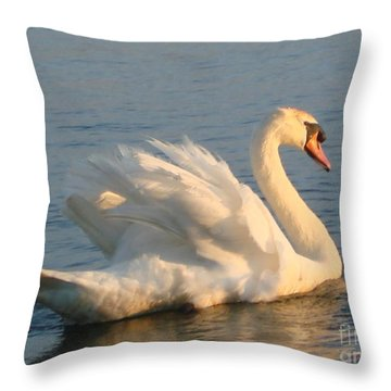 Throw Pillow featuring the photograph Are You Looking... by Katy Mei