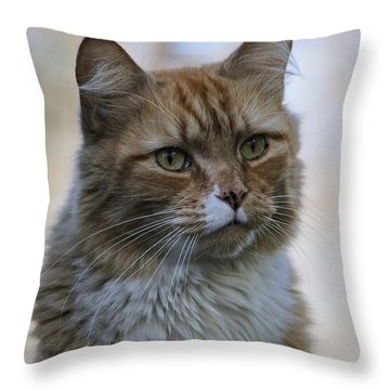 Are You Serious Throw Pillow