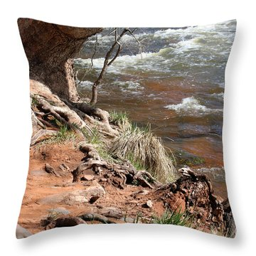 Throw Pillow featuring the photograph Arizona Red Water by Debbie Hart