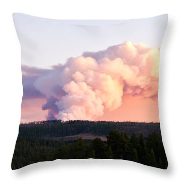 Arnica Fire Throw Pillow by Bob and Nancy Kendrick