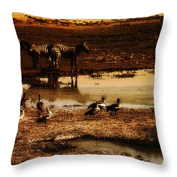 Throw Pillow featuring the photograph Around The Pond by Lydia Holly
