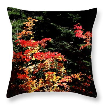 Throw Pillow featuring the photograph Arrival Of Autumn by Nick Kloepping