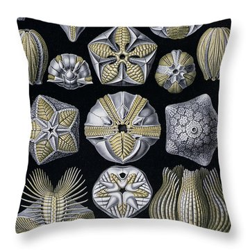 Artforms Of Nature Throw Pillow by Ernst Haeckel