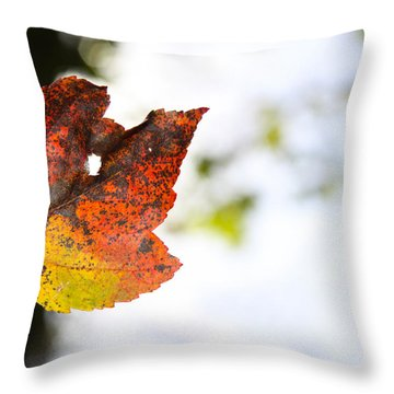 Artsy-fartsy Autumn I Throw Pillow